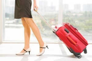 tendance-bagage-david-jones